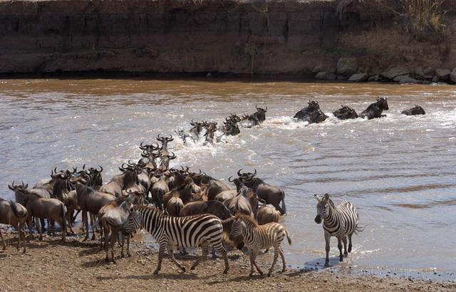 Танзания. Долина Серенгети
