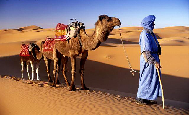 Испания + Марокко